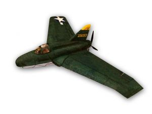 Northrop XP 56 Black Bullet